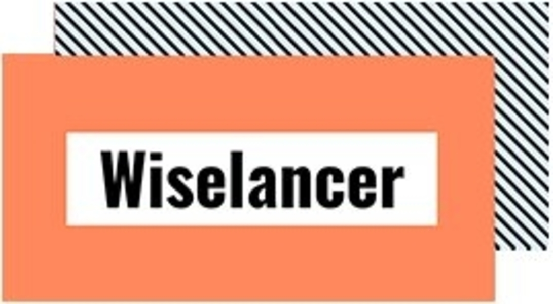 About Wiselancer