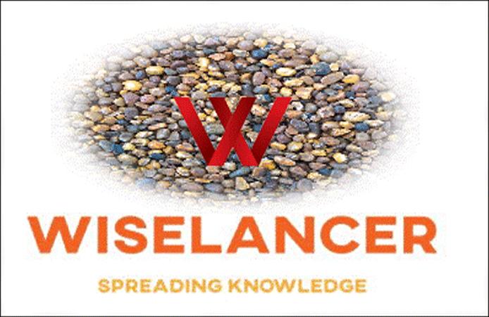 Wiselancer